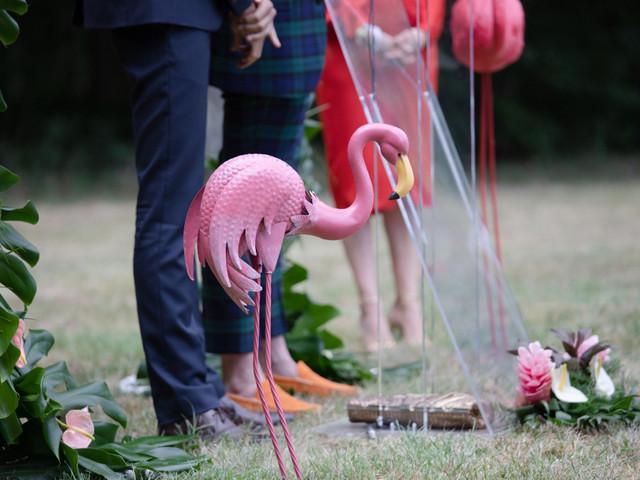 Flamant rose : l'animal favori des décors de mariage