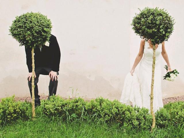 Des buis pour une décoration de mariage façon bonzaï