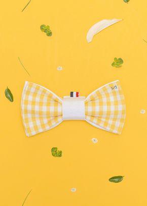 PBS-Vichy jaune couverture catalogue, 997
