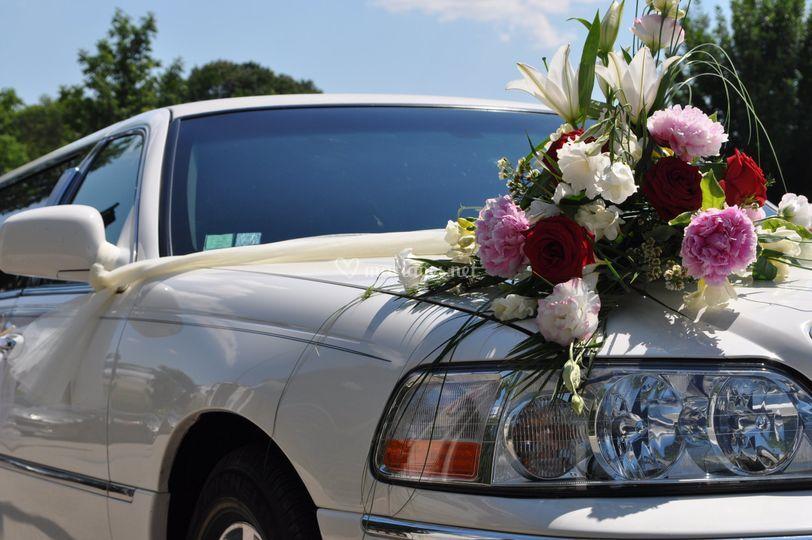 Limousine Lincoln Da Brian