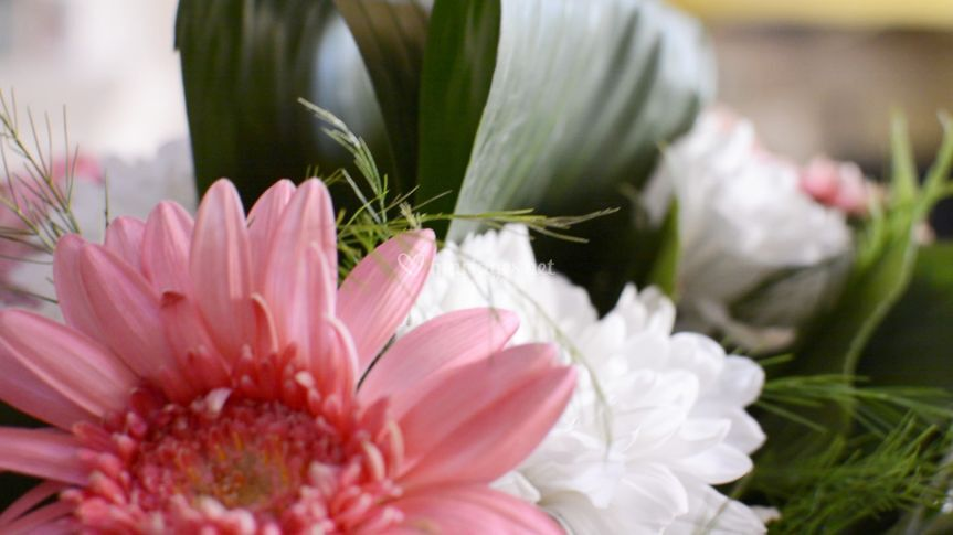 Vidéo mariage fleuri