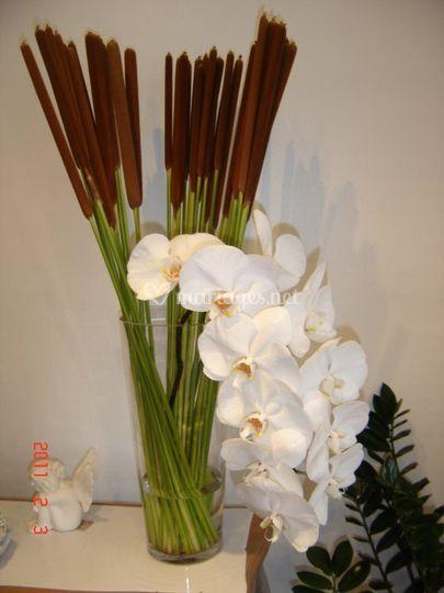 Arômes et fleurs