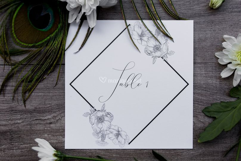 Collection Calligraphie Chic