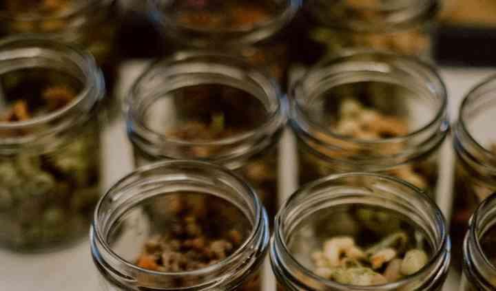 Assortiment de verrines salées