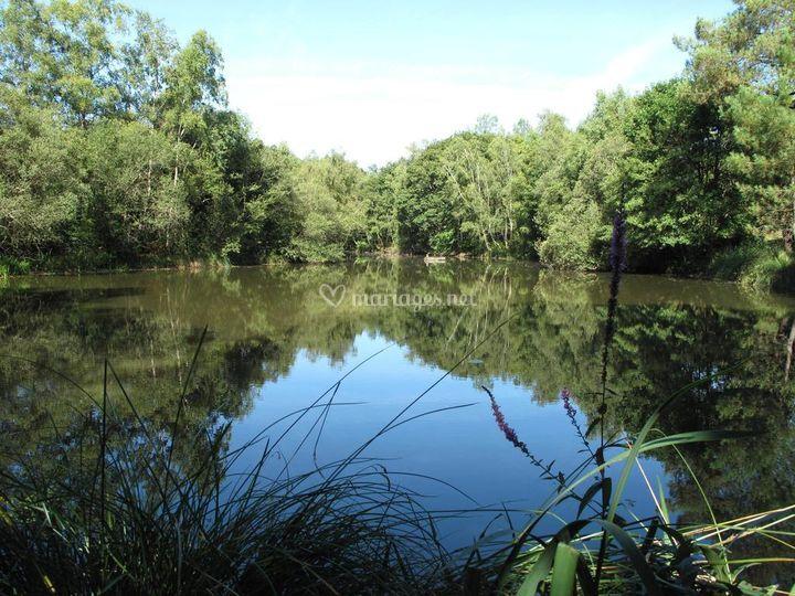 Lac au domaine