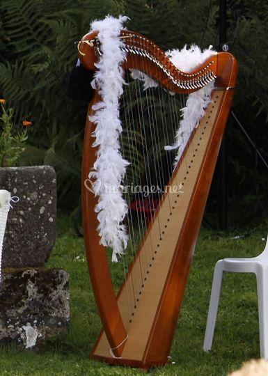Harpe - cérémonie laïque