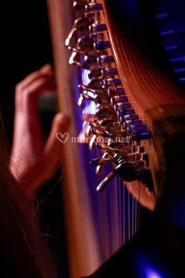 Harpe - prestations