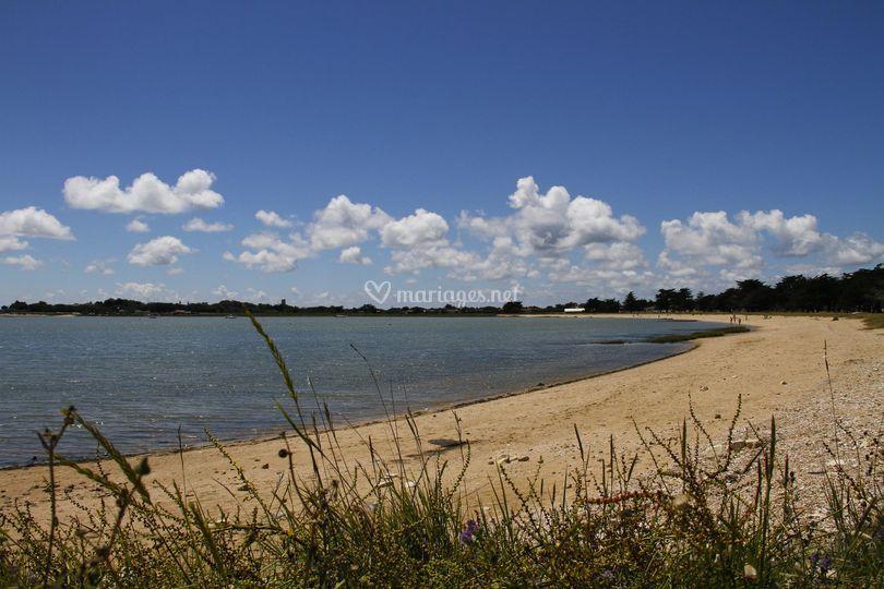 La plage du saillant (30m)
