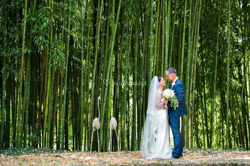 Couple dans une bambouseraie