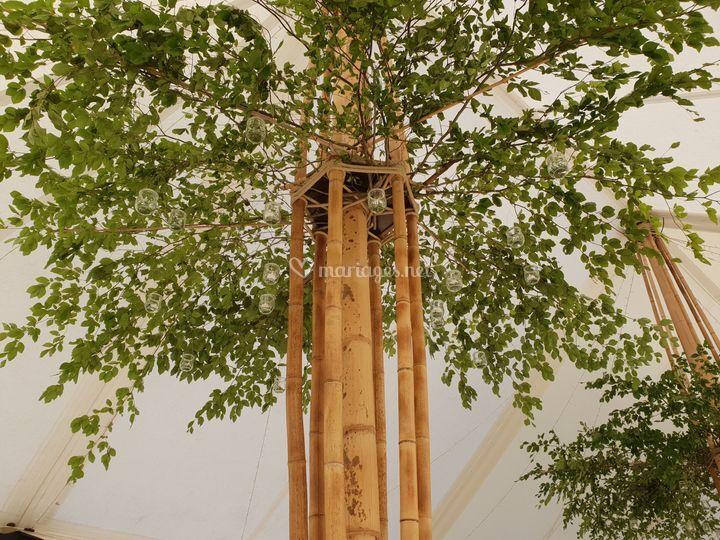 Elégance du Bambou authentique