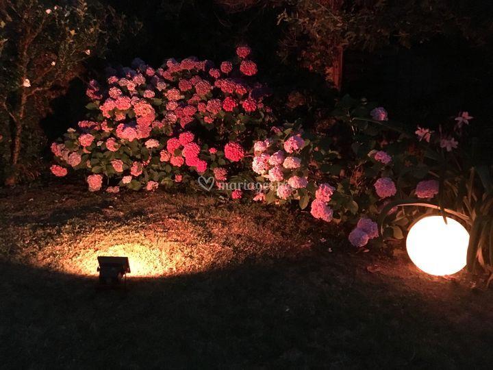 Eclairage extérieur & décoration