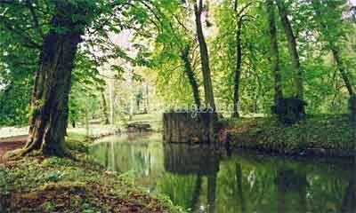 Parc étang