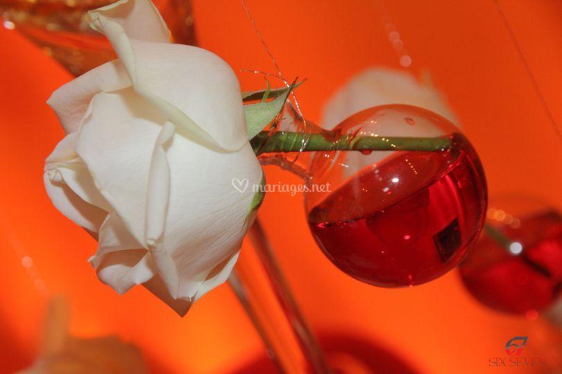 Décoration rose blanche