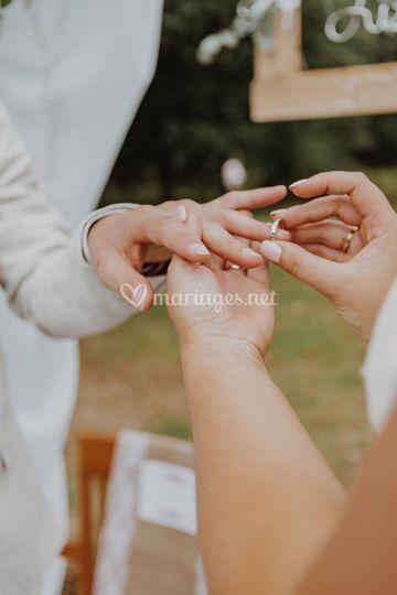 Echange alliance mariage J&M