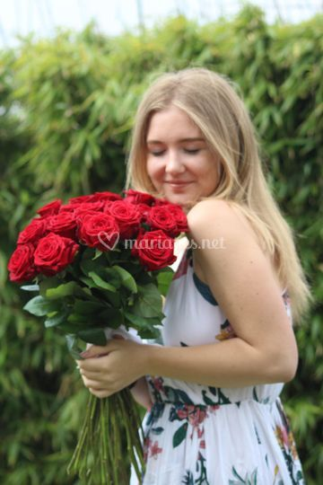 Beau bouquet de roses