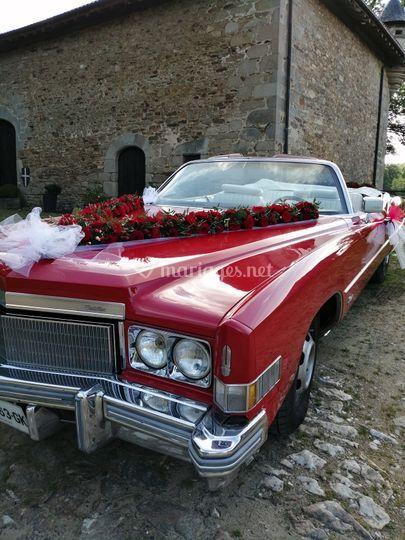 Fleurissement voiture