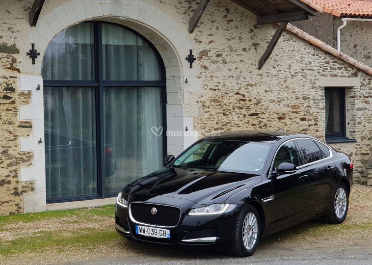 Jaguar xf interieur beige