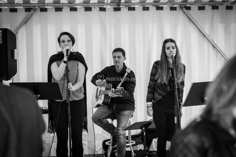 Trio Ladie's Night