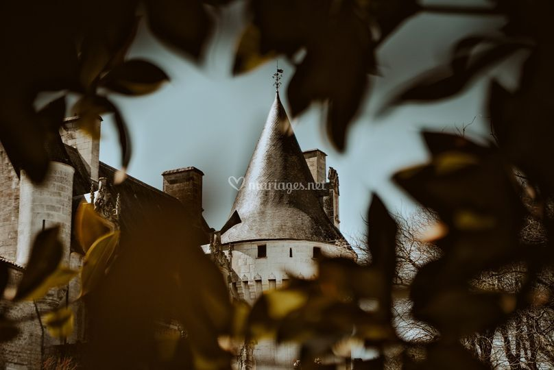 Château et magnolia