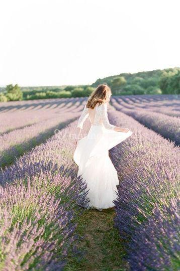 Scène de Mariage - Provence