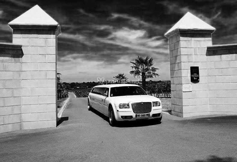 limousine bentley de prestige organisation photo 15. Black Bedroom Furniture Sets. Home Design Ideas