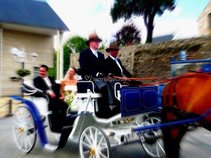 Mariage dans le Nord, Finistère