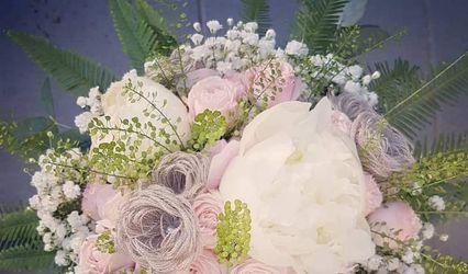 Fleurs d'Ange 1