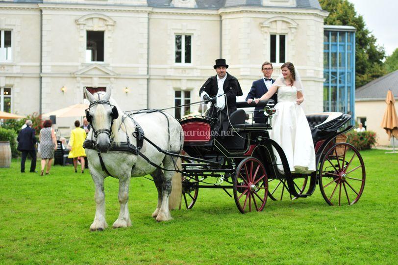 Victoria avec mariés