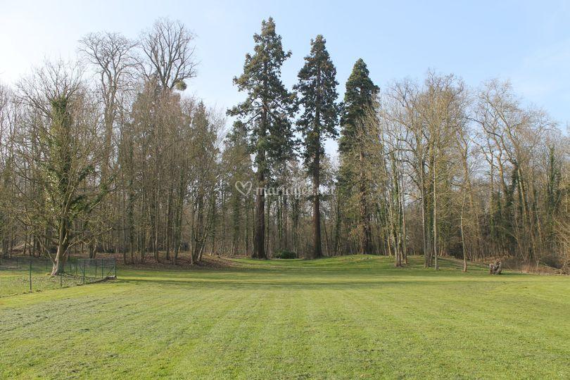 Jardin du salon Castel