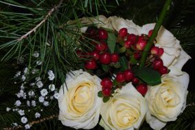 Beija Flor 35