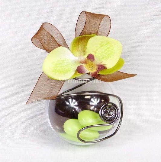 Orchidée et Arabesque chocolat