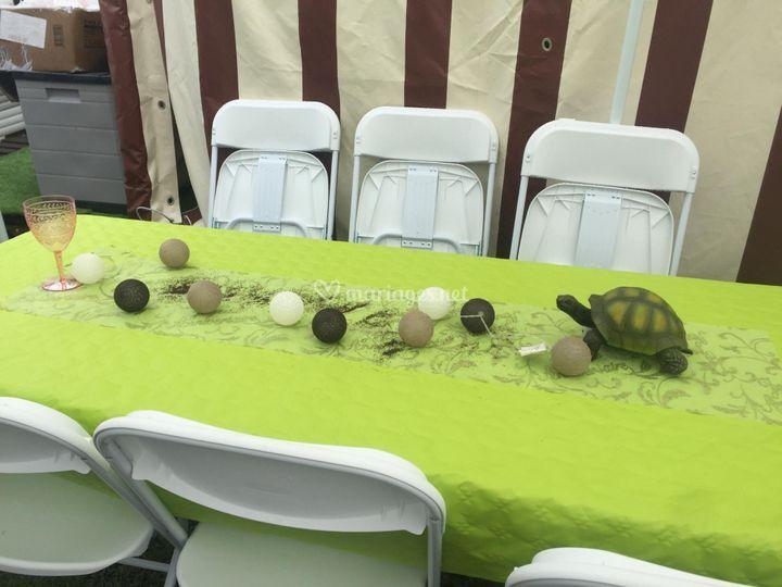 Festifs Event