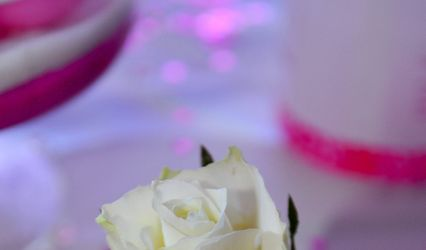 Paradis Blanc 1