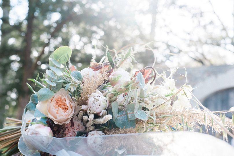 Détails fleurs