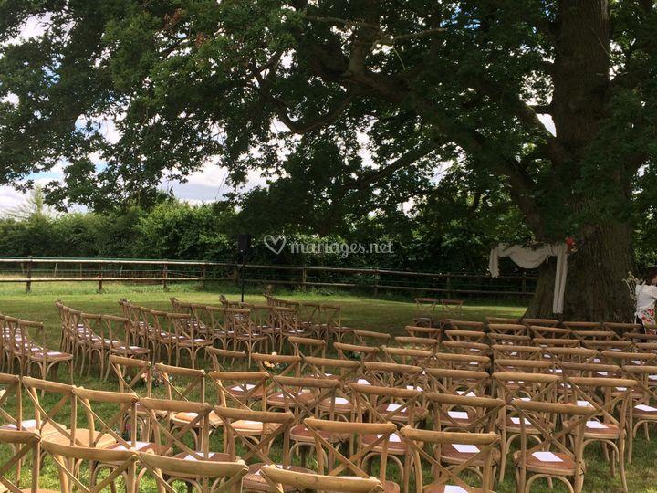 Se marier sous le chêne