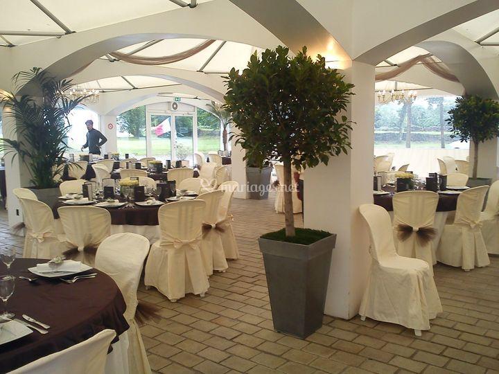 Location plantes mariage