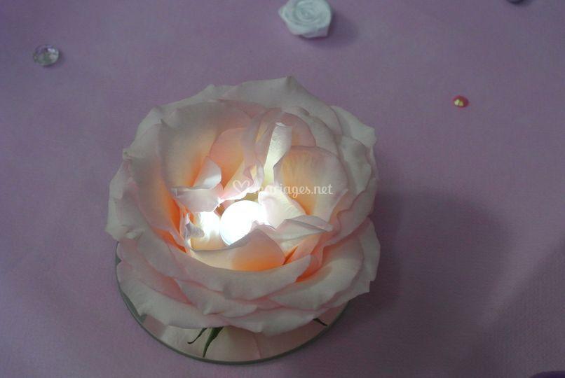 Rose naturelle lumineuse