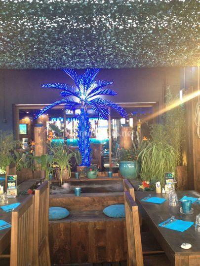 Palmier lumineux