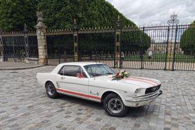 Lenny Jorand  -   Ford Mustang 1966