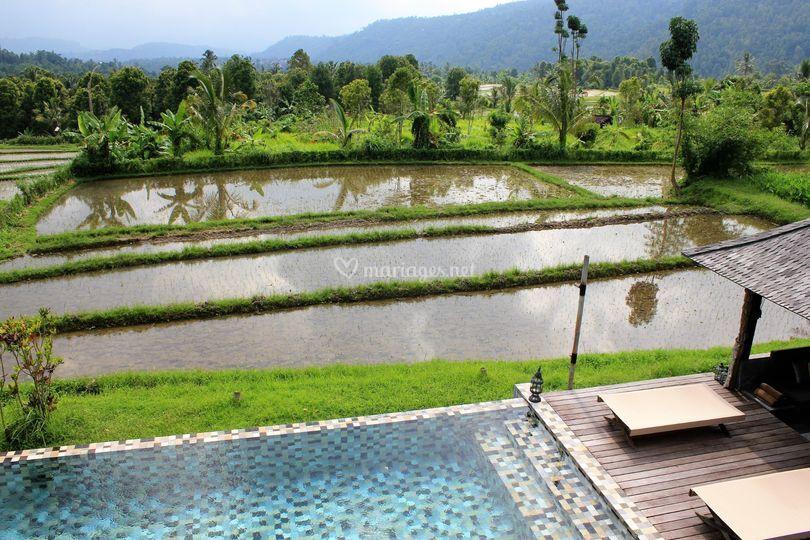 Au coeur de Munduk - Bali