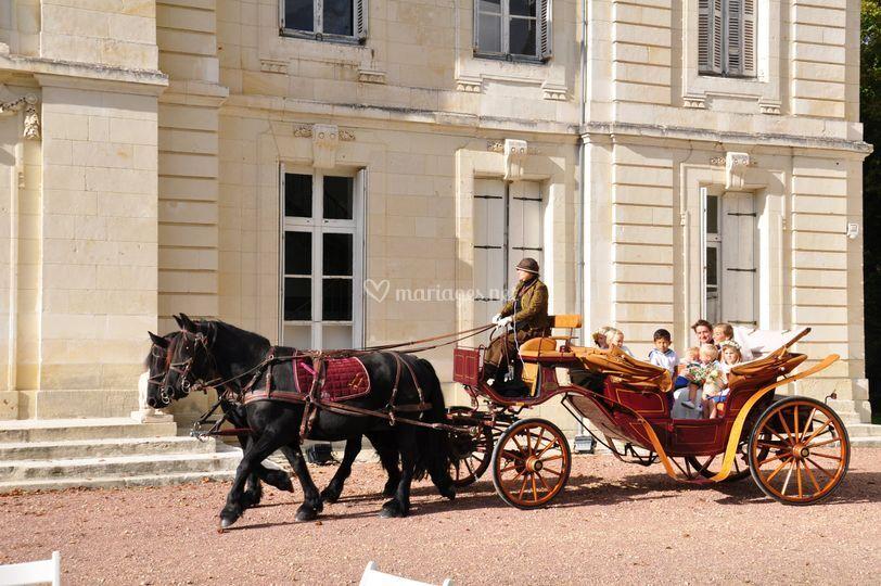 Mariage en calèche au château