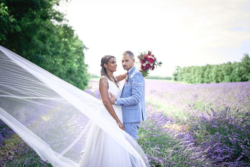 Mariage Valence Lavandes
