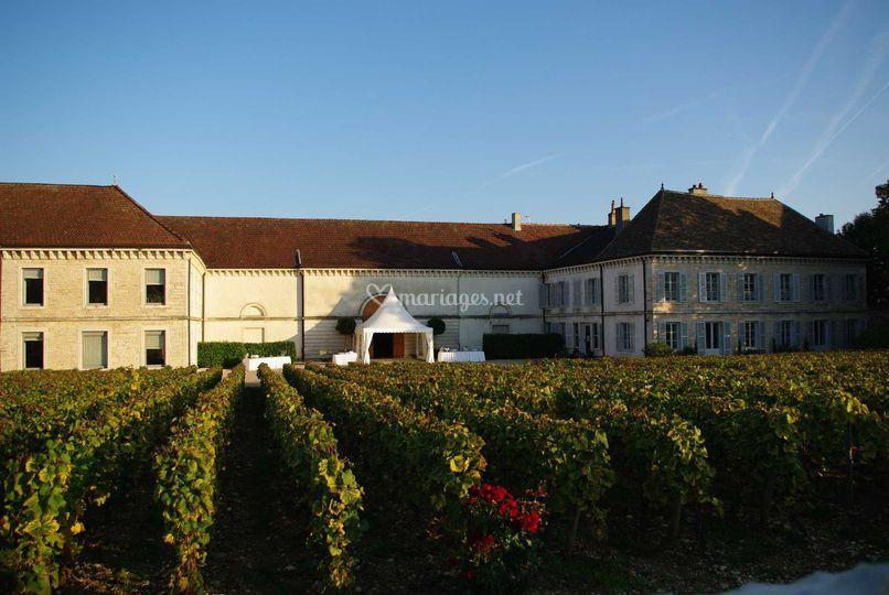 Domaine Du Chateau De Chassagne Montrachet Montrachet
