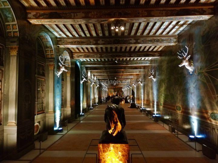 Light Chateau Fontainebleau