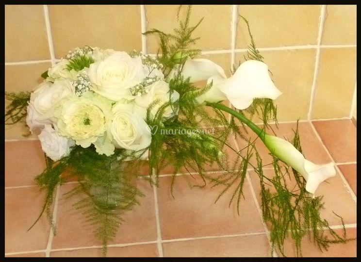 Cascade callas et roses