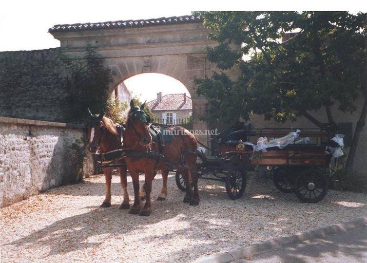 Caleche chateau