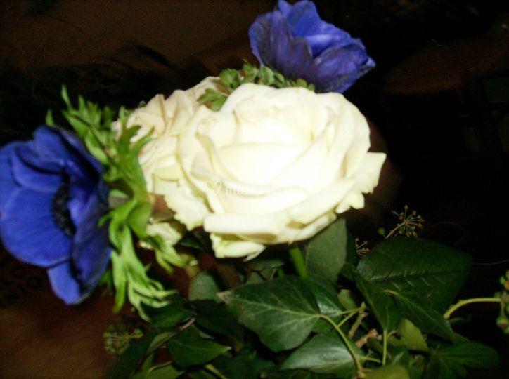 L'atelier et ses fleurs bleues