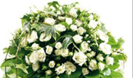 Florajet 1