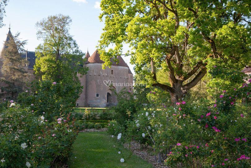 Le château vu de la roseraie