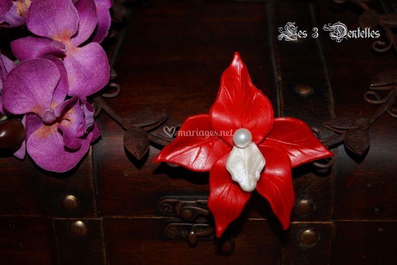 Pic chignon orchidée